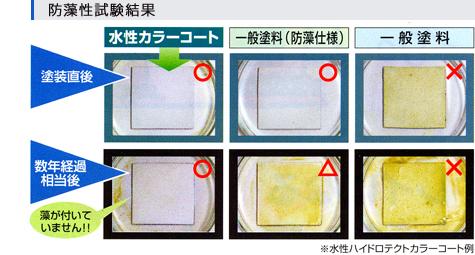 防藻性実験